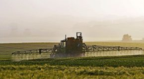 Le COVID ne justifie pas d'épandre des pesticides au ras des habitations